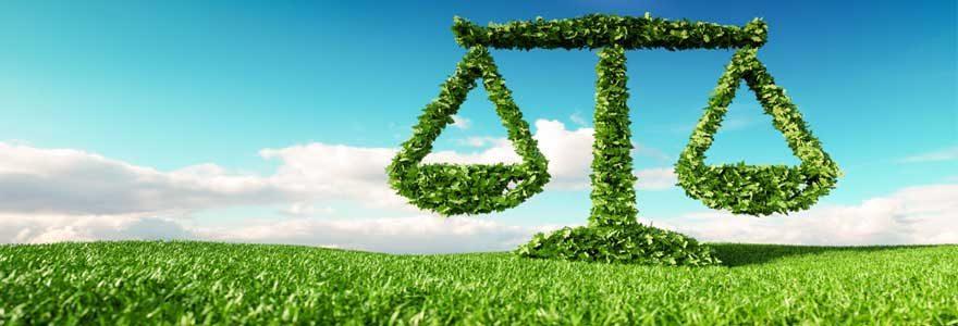 Les contrats de production agricole : Les aspects juridiques